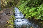 Hiking along Madeira's historic water supply system, Portugal