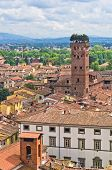 Cityscape of Lucca with Guinigi tower in front, Tuscany