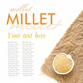 Raw Millet In A Bowl