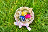 Wooden Basket With Colorful Easter Eggs And Flowers In A Wet After Rain Grass