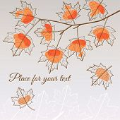 Linden leaf orange style with place for your text