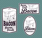 Bacon vintage labels set