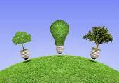 Lamp, The Concept Of Ecology