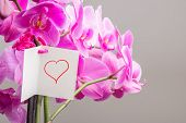 Card With Hand Drawn Heart Tied To Orchid Plant
