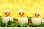 Easter breakfast of chick eggs