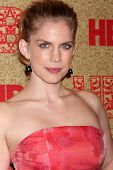 LOS ANGELES - JAN 12:  Anna Chlumsky at the HBO 2014 Golden Globe Party  at Beverly Hilton Hotel on January 12, 2014 in Beverly Hills, CA