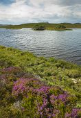 Scottish Landscape With Moorland And Loch. Highlands. Scotland