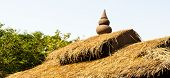 Thai Thatched Roof