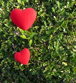 Two Hearts On Green
