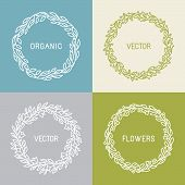 Vector Floral Wreaths And Linear Borders