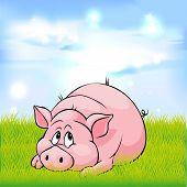 Pig Cartoon Laying On Green Grass - Vector Illustration