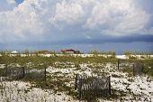 Heavy Machinery & Sand Dunes, Gulf Coast
