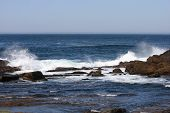 pic of shoreline  - This image was taken along the shoreline of Point Lobos State Preserve in Carmel - JPG