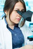 pic of chemistry technician  - technician in the laboratory using a microscope - JPG