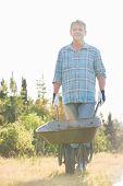 image of wheelbarrow  - Portrait of male gardener pushing wheelbarrow at garden - JPG