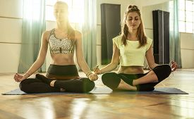picture of yoga  - couple of girls making yoga in the gym - JPG