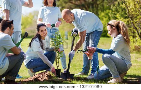 volunteering, charity, people and ecology concept - group of happy volunteers planting tree and digg