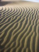 Sand Duna