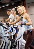 picture of gym workout  - Group of people jogging in a gym - JPG