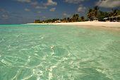 Crystal Clear Paradise20060813