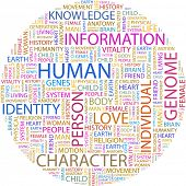 HUMANA. Colagem de palavra sobre fundo branco. Ilustração com termos de associação diferente.