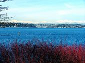 Winter View_Lake & Mtns