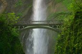 image of portland oregon  - a bridge at multnomah falls near portland oregon - JPG