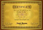 vector Certificate Gold Frame