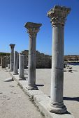 Crimea. Hersones. Greek Pillars