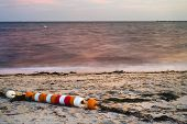 String Of Beach Buoys