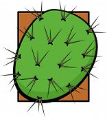 pic of nopal  - prickle pear or nopal - JPG