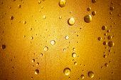 Shower Door - Yellow