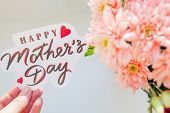 Happy Mothers Day Card. Greeting Card With Spring Bouquet.pink Chrysanthemum Flowers.happy Mothers poster