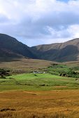 Beautiful Lush Farm In Ireland