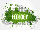 Ecology Word Cloud, Conceptual Green Ecology Background poster