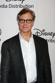 LOS ANGELES - MAY 20:  Henry Czerny arrives at the ABC / Disney International Upfronts at Walt Disne