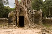 image of strangle  - Gateway to the ancient Khmer temple of Preah Khan - JPG