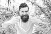 Two Thumbs Up For Summer. Hipster Gesturing On Nature. Caucasian Hipster With Thick Beard Hair And S poster