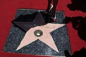 LOS ANGELES - MAY 22: Patricia Heaton's star at a ceremony honoring Patricia Heaton with a Star on T