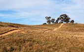 Hilly Country Road. Tablelands Near Oberon. New South Wales. Australia.