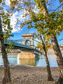 Vertical Picture Of Famous Szechenyi Chain Bridge In Budapest, Hungary Taken With Autumn Trees From  poster