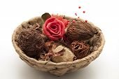 Phloem basket with potpourri