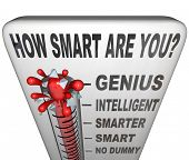 A thermometer marked How Smart are You measuring your intelligence level, with mercury rising past No Dummy, Smart, Smarter and the word Intelligent