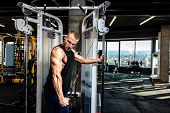 Triceps Workout, Young Muscular Strong Sweaty Fit Man Triceps Workout Training On The Cable Machine  poster