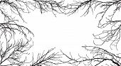 Background Of Silhouettes Of Branches Of Different Trees. In The Center Is Space For Text. Applied C poster