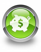 Money box (dollar) glossy icon