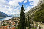 Montenegro, Kotor, 09 October, 2019. View Of Bas-relief (low Relief) On Old Kotor Walls Of The Old T poster