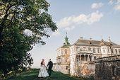 Gorgeous Wedding Couple Walking In Sunlight Near Old Castle In Beautiful Park. Stylish Beautiful Bri poster