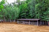 Farm Shelter Pasture For Cloven-hoofed Animals With A Barn Canopy For Animals With Dry Hay And Green poster