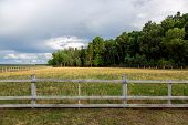 A Pasture Fenced By A Wooden Fence, A Meadow With Grass In The Background A Forest With Tall Trees A poster
